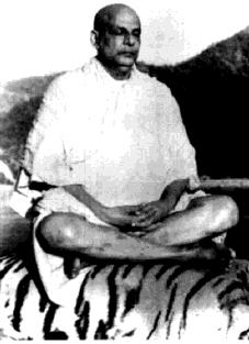 sivananda_tigers